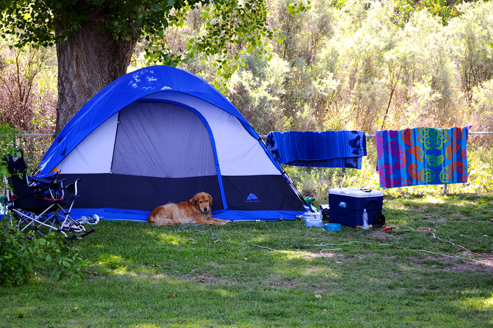 Campgrounds At Hauli Huvila